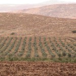 israel 11-09 153