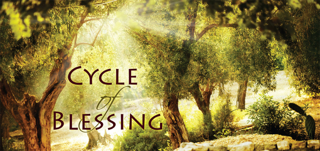 my olive tree cycle of blessing