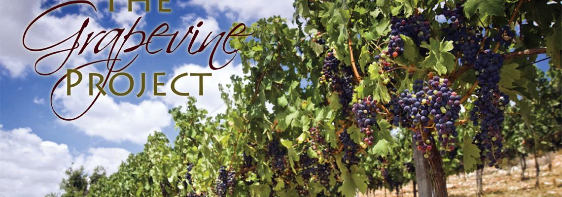 grapevine project
