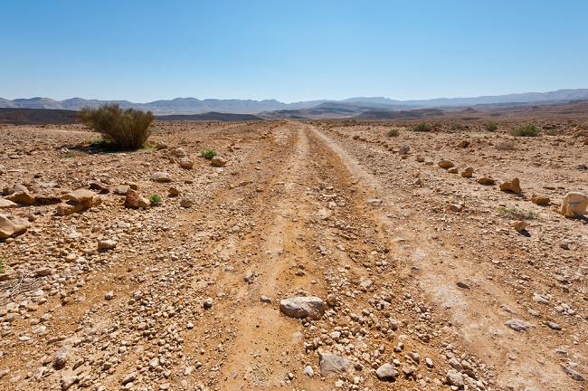 The History of the Negev Desert