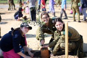 Safe house Children Planting Olive Trees with Soldiers during a field trip.