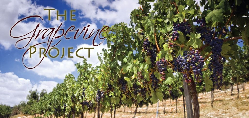 Did you know that there are over 80 verses in the Bible that speak about grapes?