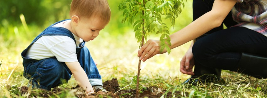 Boy with adult planting tree