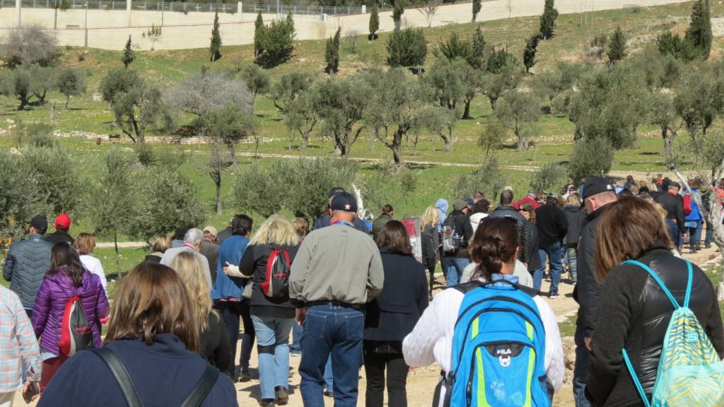 King's Valley: A Very Special Tree Planting
