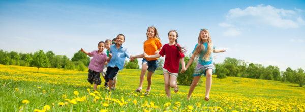 OLIVE OIL: Healthy Diets Make Happy Kids