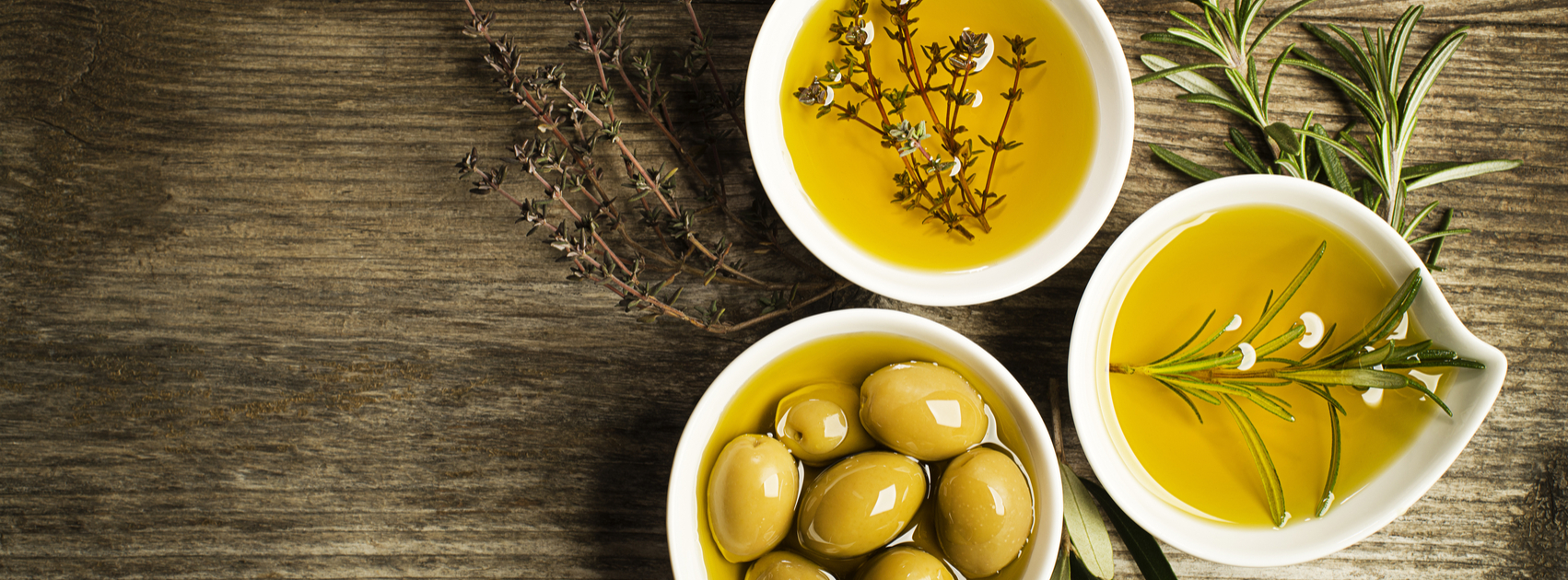 Olive Branches | DIY Ideas - Sponsor an Olive Tree in Israel