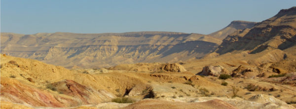 Destined for Development—Restoring the Negev Desert