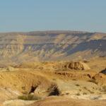 Destined for Development—Restoring the Negev Desert