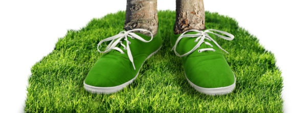 What Does Your Carbon Footprint Cost? 5 Simple Steps to Offset It