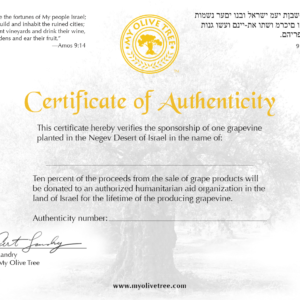 Sponsor Grapeving Certificate at My Olive Tree