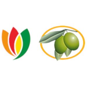 Israeli Olive Oil Board