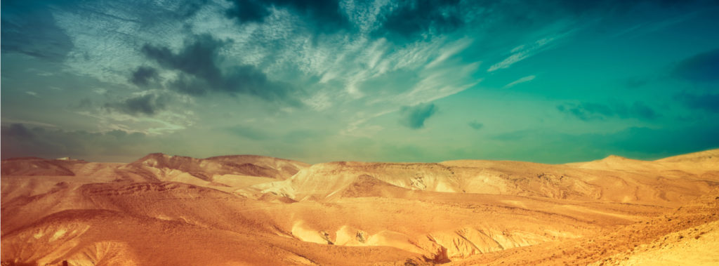 Negev: Centuries of Life