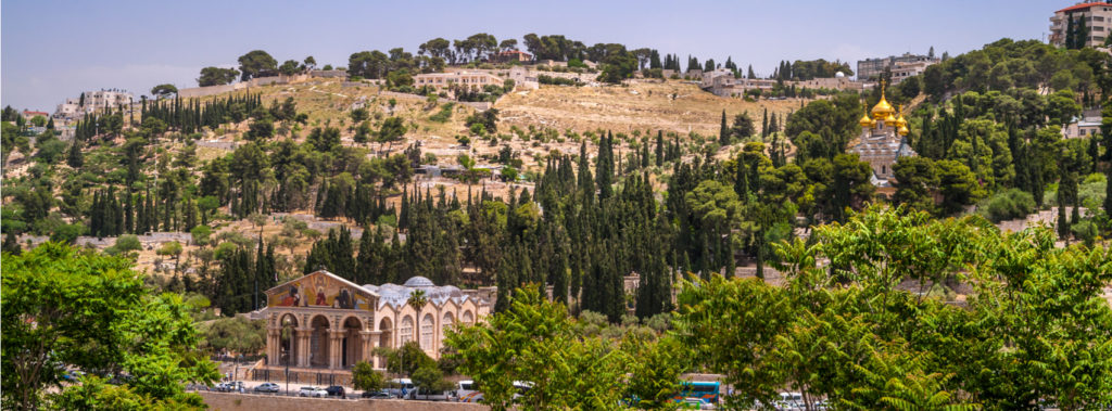 The Mount of Olives: Where Jesus Prayed and Wept
