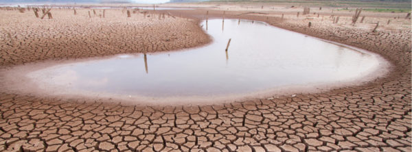 Are We in a World Water Crisis?
