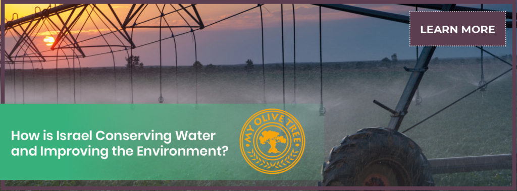 Banner - How is Israel Conserving Water and Improving the Environment