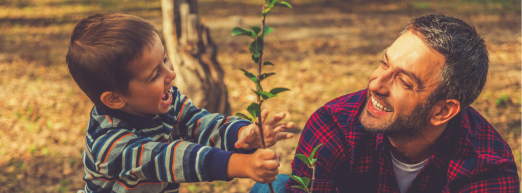 Tu B'Shevat | The New Year of Trees
