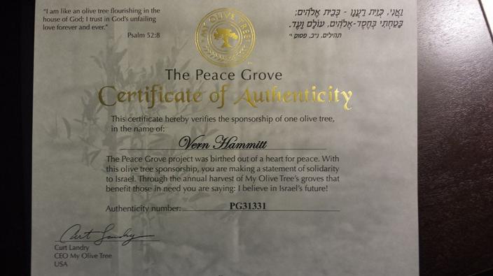 Vern Hammitt - Certificate