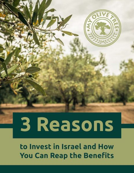 Investment in Israel